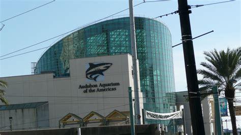 aquarium new orleans   Panoramio Photo of Audubon Aquarium ...