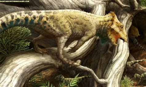 Aquilops: Rare  eagle face  dinosaur discovered is tiny ...