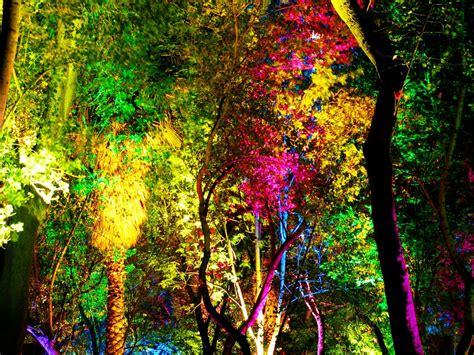 Arboles de colores 2 by aaguilerav on DeviantArt