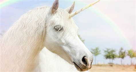 Are Unicorns Real? Here are the facts.   George Lizos