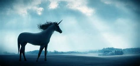 Are Unicorns Real? What Vision Has to do With Reality
