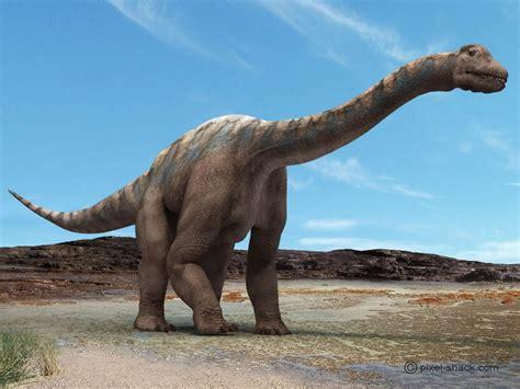 Argentinosaurus   Fotos, Hechos y Historia   Dinosaurios