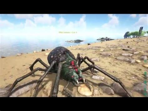 Ark Survival Evolved   How To Spawn Dinos!!!   YouTube