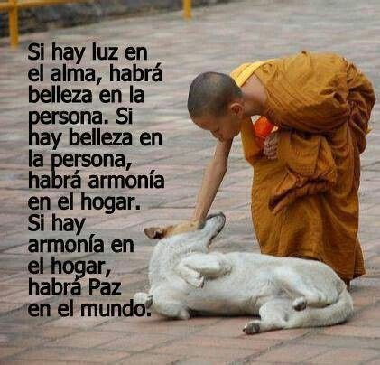 ARMONIA.....   Dalai lama, Spanish quotes, Powerful words