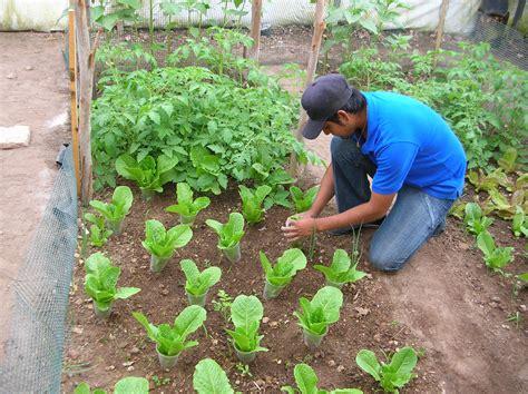 Arranca el primer taller de agricultura orgánica en ...