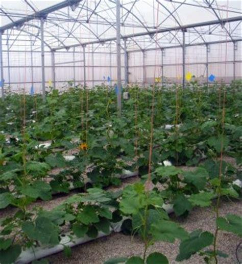 Artículos de interés sobre fruticultura   Página 70