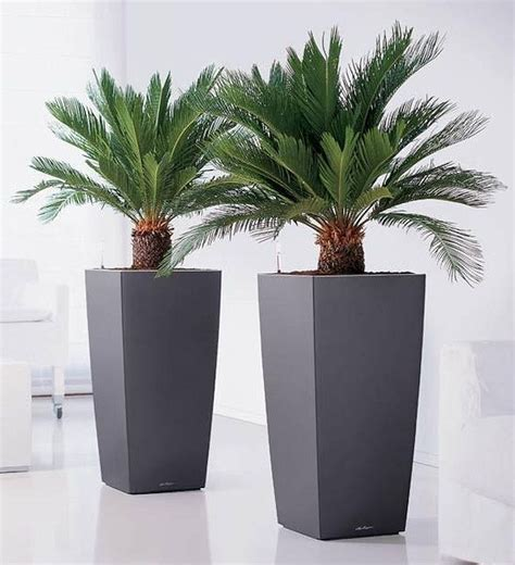 Artificial Cycas Palm Plant in 2020 | Sago palm tree ...