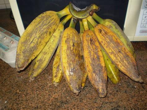 As utilidades da banana marmelo   Banana.blog.br