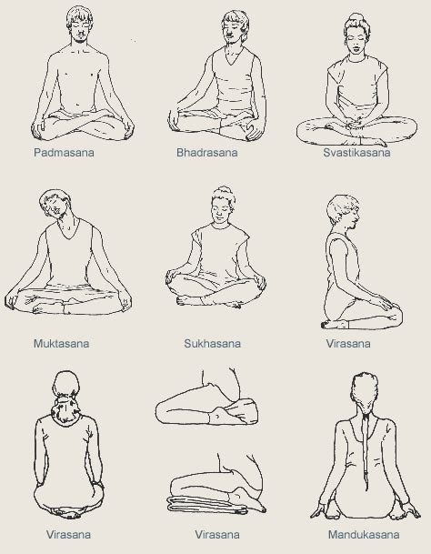 Asanas  posturas  populares en hatta yoga | YogaFest