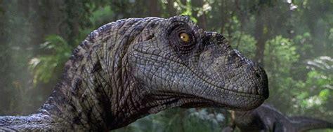 Así sería 'Jurassic Park' si fuera un documental de ...