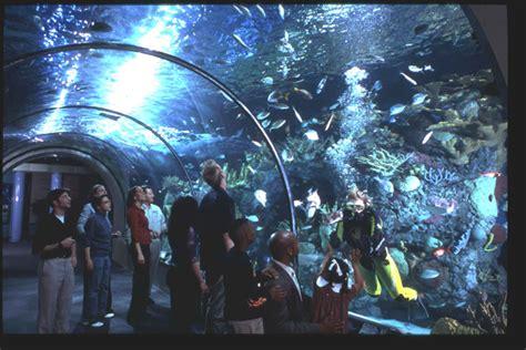 Audubon Aquarium of the Americas | New Orleans | Attraction