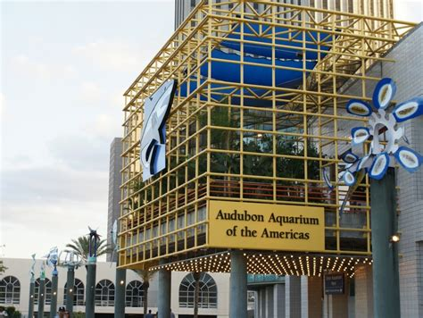 Audubon Aquarium of the Americas | New Orleans | eventseeker