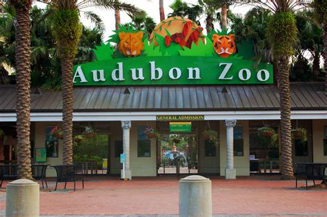 Audubon Zoo   Hometown Tourist