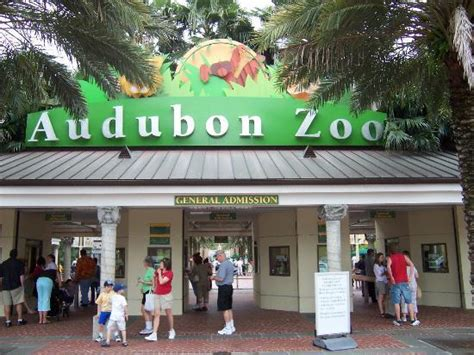 Audubon Zoo  New Orleans    2019 What to Know Before You ...