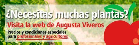 Augusta Jardín | Centro de Jardinería en Calatayud   Zaragoza