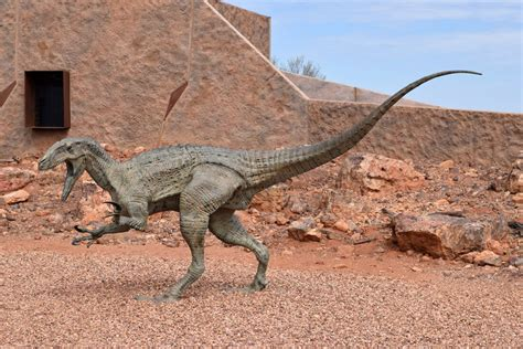 Australian Age of Dinosaurs Museum & Lab   Roaming The Outback