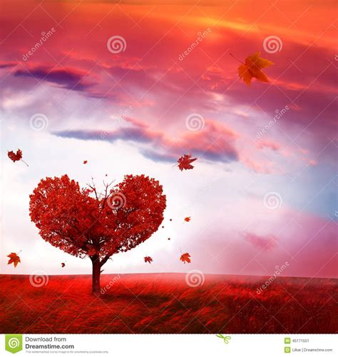 Autumn Landscape With Love Tree Stock Image   Image: 45171551