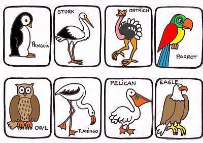 Aves con sus nombres en inglés. | Animales en inglés y ...