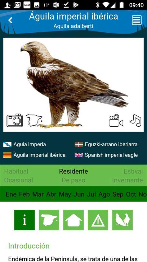 Aves de España for Android   APK Download