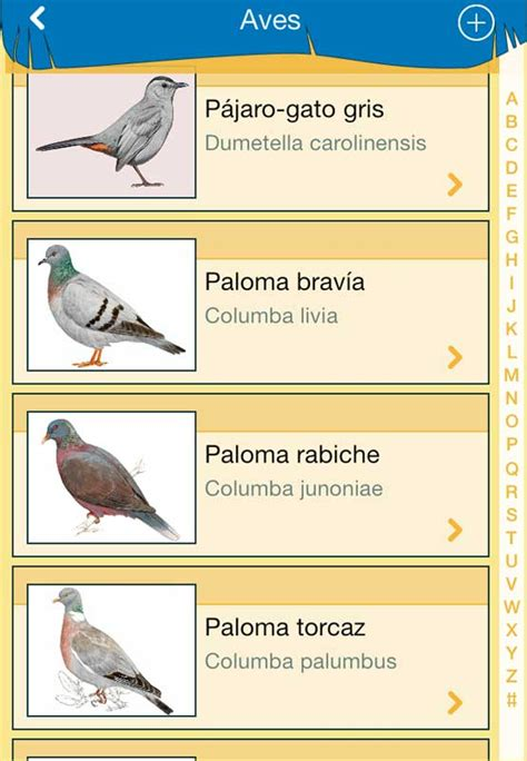 Aves de España para Android   Descargar