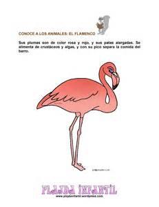 Aves | Plagda Infantil | Página 3