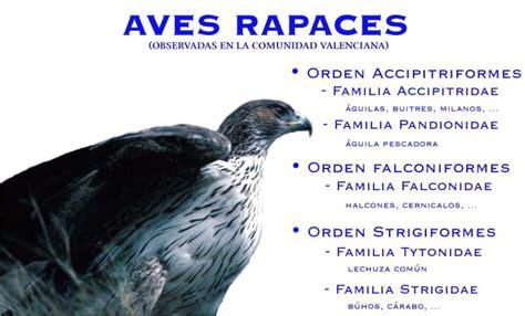 Aves Rapaces  G.E.R.