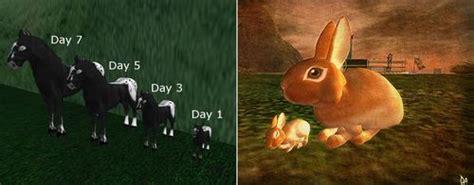 Ayuda para Second Life: Amaretto Ranch Breedables, LLC v ...