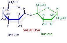 Azúcar de caña   EcuRed