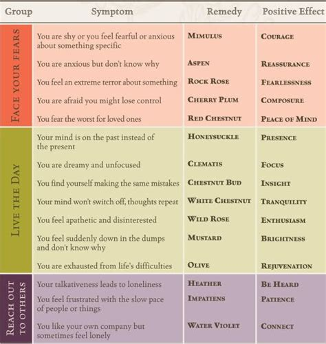 bach flower essences chart | Bach flower remedies, Flower ...