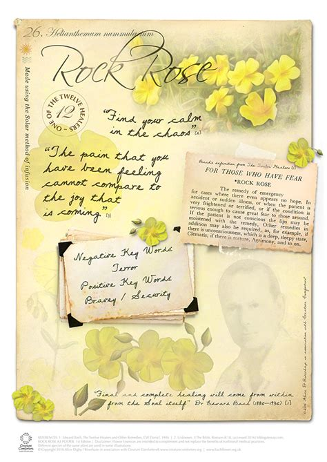 Bach Flower Poster Set 38 x A4 + FREE Display Book