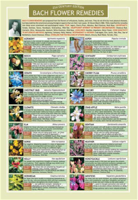Bach Flower Remedies Chart