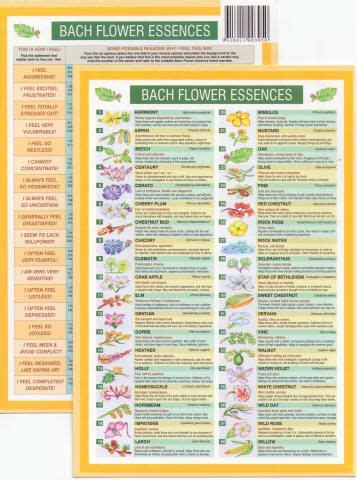 Bach Flower Remedies Mini Chart | Bach flowers, Herbal ...