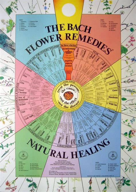 Bach Flower Wall Poster Chart FOR SALE   FREE Shipping