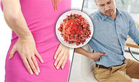 Back pain symptoms: Lower backache could be cancer sign ...
