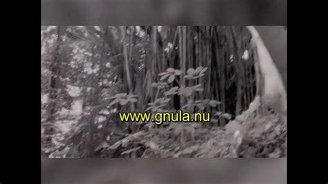 Baila conmigo parte 1 en español latino   YouTube