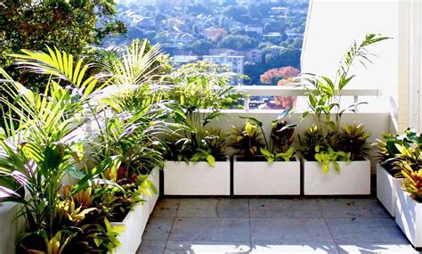 Balcony Plant Pots Sydney | Lightweight | Terrace Outdoor ...