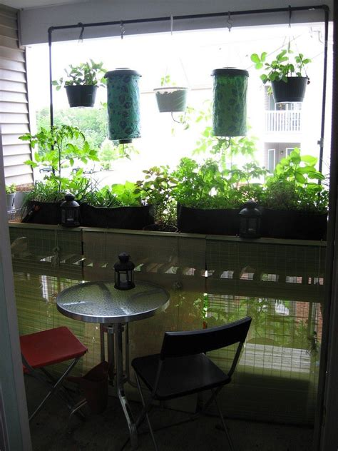 Balcony Vegetable Garden   Growing A Vegetable Garden On A ...