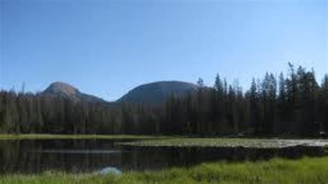Bald Mountain Campground   Bighorn National Forest ...