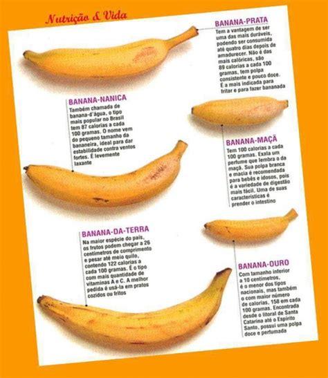 Banana Varieties | Bananalabel Catalog