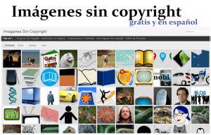 Banco De Fotos Sin Derechos De Autor   Banco Consejos