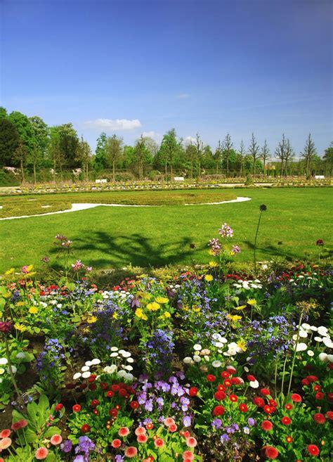 Banco de Imágenes: 8 fotos de jardines, plantas y flores ...