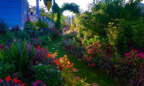 Banco de Imágenes: Jardín con miles de flores de colores ...