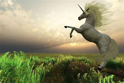 Banco de Imágenes: Unicornio real en un paisaje fantástico ...