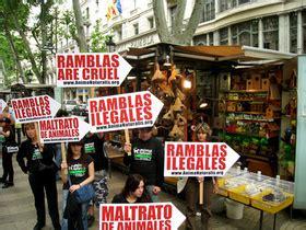 Barcelona prohíbe definitivamente la venta de pájaros en ...