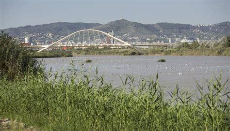 Barcelona se reconcilia con sus ríos | Cataluña | EL PAÍS