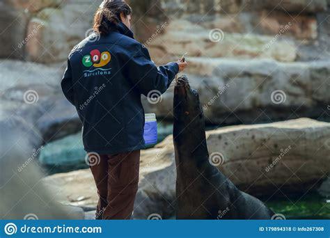 Barcelona Zoo, Barcelona Spain April 20, 2017   Barcelona ...