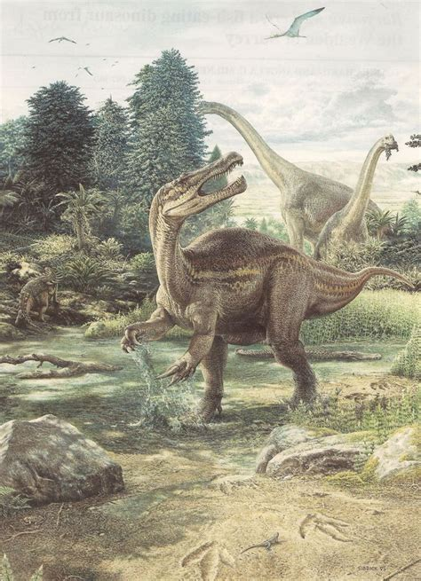 Baryonyx by John Sibbick | Prehistoric animals, Dinosaur ...