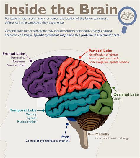 Basics of Brain Tumors | Johns Hopkins Medicine