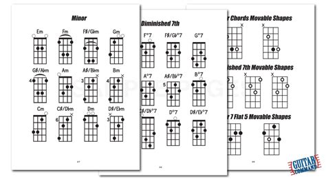 Bass Scales, Chords & Arpeggios Book By Guitar Command