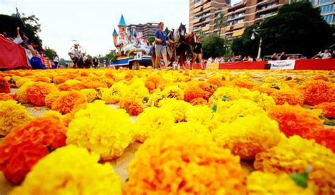 Bataille des fleurs 2019   Urban Youth Hostel Valencia